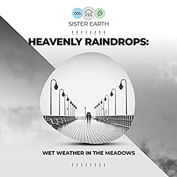 ! ! ! ! ! ! ! ! Heavenly Raindrops: Wet Weather in the Meadows ! ! ! ! ! ! ! !