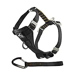 Kurgo Tru-Fit Dog Harness - Best Safety Harness for Dogs in Cars