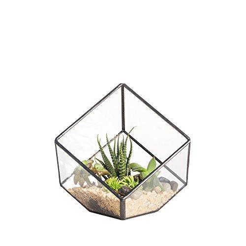 NCYP Terrario in vetro a forma di cubo inclinato, per casa, giardino, finestra, davanzale, balcone, tavolo decorativo, per piante grasse, felce e muschio, 10 cm (piante non incluse)