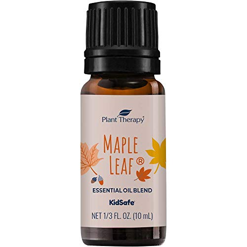 Plant Therapy Maple Leaf Fall Blend Essential Oil 10 mL (1/3 oz) 100% Pure,...