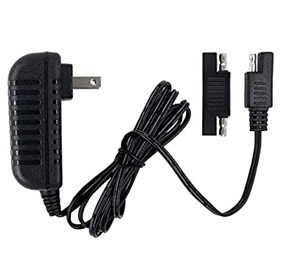 Charger 6V for Disney Quad Pacific Cycle Marvel The Avenger Good Dinosaur Princess Fairies Minnie Mouse Frozen CAR McQueen ATV 6V Battery Ride ON Walmart Target Toy R US