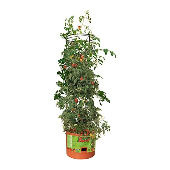 Hydrofarm GCTB2 Heavy Duty Tomato Barrel with 4' Tower, Green 2 Trellis expands to 4' Tall Planter holds approximately 14 L Water reservoir holds approximately 1. 3 gal (5 L)
