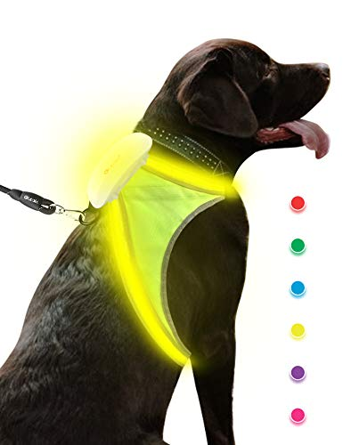 Olook LED Light Reflective Dog Harness Illuminated Adjustable Lightweight Dog Vest with Multicolored Fiber Optics for Small Medium Large Dogs, S-Green(Patent Pending)