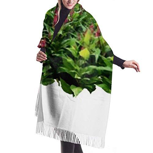 An Green Klassischer Kaschmir Feel Unisex Winterschal, tropische Pflanzen Blume Buschbaum rosa lange große warme Schals Wickelschal gestohlen