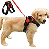 FUNKEEN PET HOUSE No Pull Dog Harness Adjustable Soft Padded Dog Vest Harnesses Chest Strap for Outdoor Walking Training Assistance (S, Red)