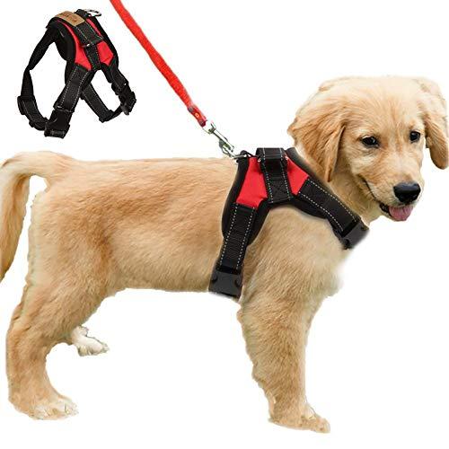 Funkeen Hundegeschirr ohne Ziehen, verstellbar, weich gepolstert, Brustgurt für Outdoor-Spaziergänge, Trainingshilfe (S, Rot)