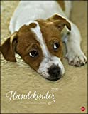 Hundekinder Posterkalender. Wandkalender 2020. Monatskalendarium. Spiralbindung. Format 34 x 44 cm