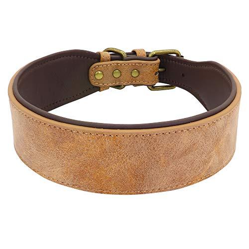 YSSDZYYMXD Collar De Perro De Cuero, para Perros Medianos Pitbull K9 L XL Refrigerante Abrigo Decorado Pet Pet Collares DE PERDIA Ajustable,2,52~62cm