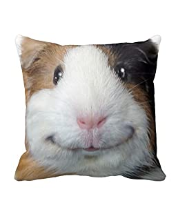 EHSaleStore Smiling Guinea Pig Cotton Square Throw Pillow Case Cushion Cover 18 x 18 inches