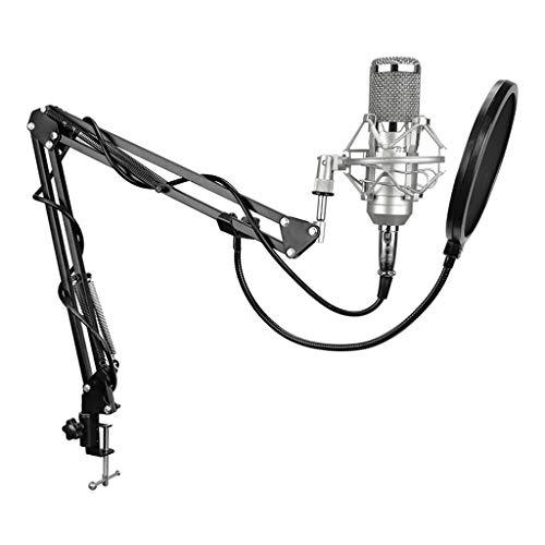 JJZXD Micrófono de Condensador de grabación Profesional sin Ruido 3.5-XLR para computadora, Tarjeta de Sonido en Vivo, Karaoke (Color : Silver)