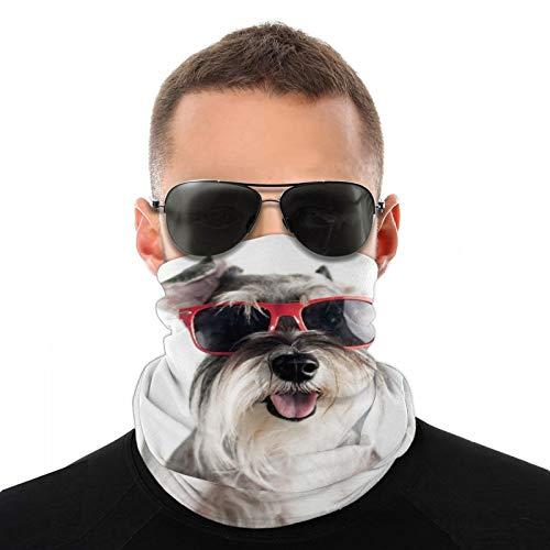 Happy Funny Cool Dog Schnauzer con gafas de sol rojas aisladas sobre fondo blanco, multifunción, cubrecuello, pasamontañas, forro para casco de equitación para niños, mujeres y hombres, protección UV