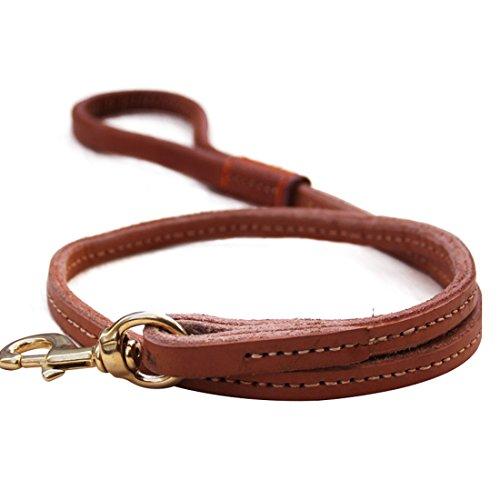 Robuste Hundeleine Lederleine Haltbare Messing Schnalle Hundeführleine Doppelschicht Echtleder Walking Leine Dog Leads Retriever 1.2M Trainingsleine für Mittlere und Grosse Hunde (L: 2.0cm breite)