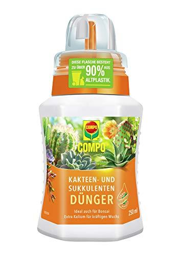 COMPO Kakteen- und Sukkulentendünger für alle Kakteen, Bonsais und dickblättrigen Pflanzen (Sukkulenten), Spezial-Flüssigdünger mit extra Kalium, 250 ml