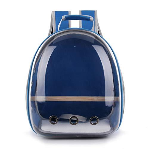 Tshopm Transporttasche für Papageien, Reisekapsel, transparent, atmungsaktiv, 360° Sightseeing, blau (Blau) - Tshopm
