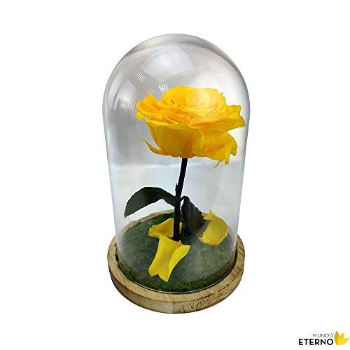 Cúpula Bella y Bestia Rosa Eterna Preservada Amarillo