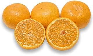 フルーツなかやま 愛媛産 日の丸みかん Mサイズ 約5キロ 42個入 発送日厳選手詰め 糖度15度以上 大きさ4.5㎝以上