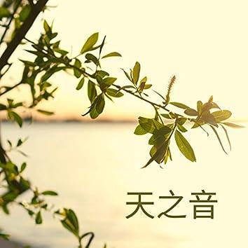 天之音 - 水声,鸟鸣,放松的音乐,器乐,海浪,安宁,睡眠,放松,白噪声。