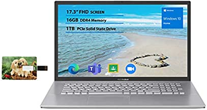 "Newest Flagship Asus VivoBook 17 Business Laptop 17.3"" FHD Display AMD Ryzen 3 3250U Processor 16GB RAM 1TB SSD USB-C HDMI SonicMaster for Business and Student Windows 10 Home 