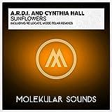 Sunflowers (Modé Pelar Remix)