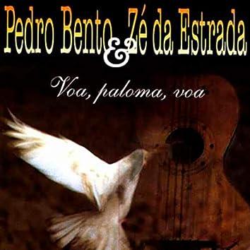 Voa Paloma, Voa