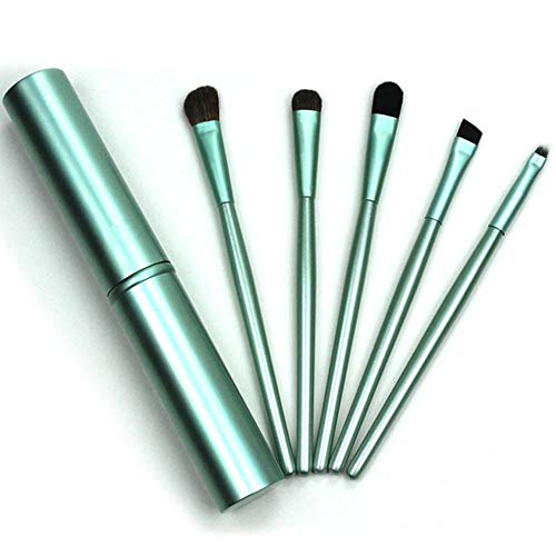 YBWZH Pinceaux Maquillage Cosmétique Professionnel 5Pcs, Fard à Paupières Maquillage Professionnel Pinceaux pour les lèvres Multifonctionnel Set Cosmétique + Tube Rond