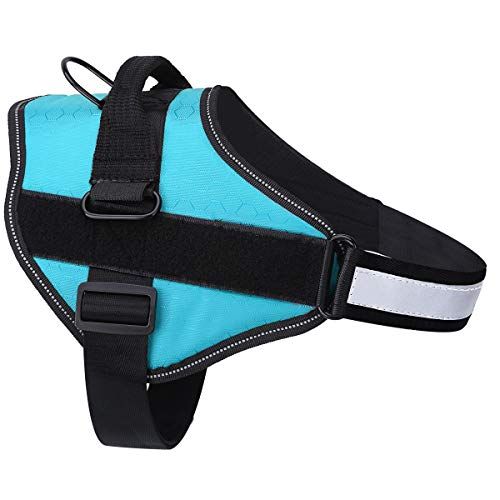 Belababy Dog Harness No-Pull Breathable Adjustable, Walking Training Assistance Chest, Outdoor Easy Control for Medium Large Small Dogs, S Light Blue Dog Vest Harness
