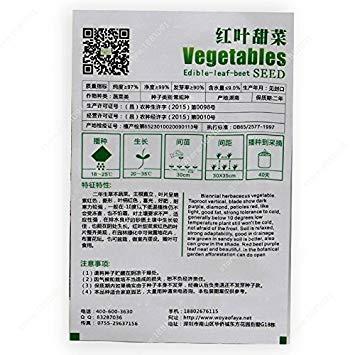 VISA STORE 100seeds / Beutel Kohlsamen Gemüsesamen Grünkohl-Samen Aussaat Jahreszeiten