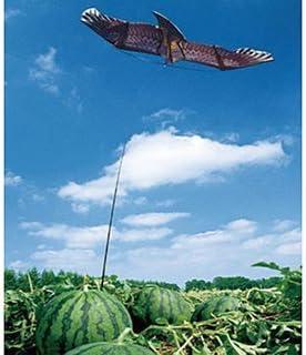 農業屋 鳥追いカイト鷹