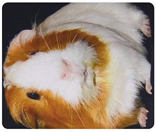 Alfombra Ratón Alfombrilla de ratón con conejillo de indias Mouse Mat 25X30CM