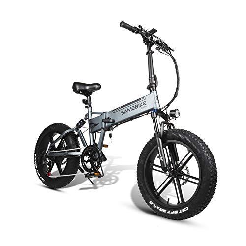 Gaoyanhang Bicicleta eléctrica eléctrica Plegable de 20 pulgadas-500W E-Bike 6061 aleación de Aluminio aleación de Grasa Bicicleta eléctrica (Color : Chrome)