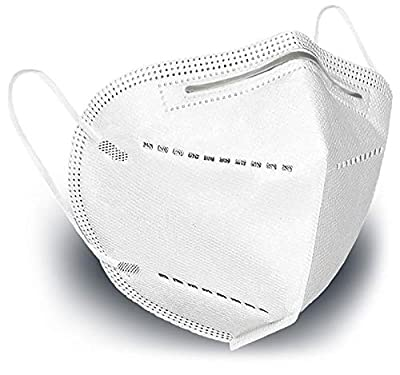 Plexon Disposable Ear Loop 4 Ply Face Protection Mask, PM2.5, Non-woven Fabric, Purifying and Breathable, Medium Size with Nose Bridge Clip (Pack of 10) from Plexon