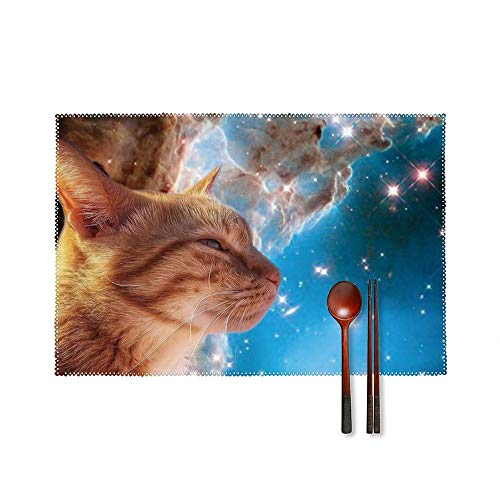Fashion Place Mats Set of 4 Galaxy Space Whiskers Rectangle Non-Slip Insulation Table Desk Protector Mats Easy Wipe Clean Placemats for Home Kitchen Round Dining Table Mats 18'X12'