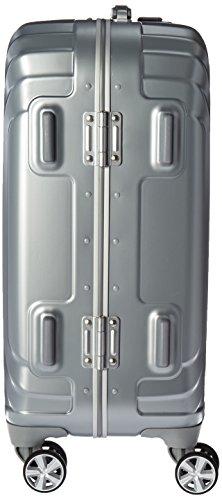 Samsonite Tru-Frame Hardside Spinner 20, Matte Silver, One Size