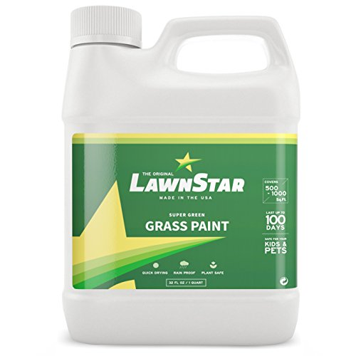 top rated Lone Star Glass Paint, 32 fl oz.  – The grass turns green again – A non-toxic aqueous solution… 2020
