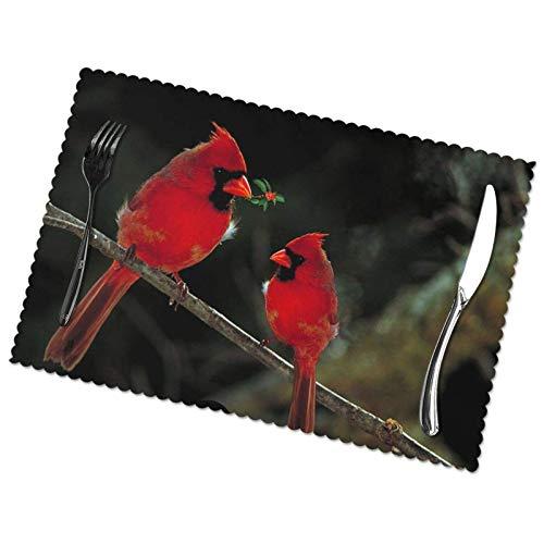 Juego de 6 manteles Individuales con Estampado Salvaje de Red Birds Fauna, Material de poliéster fácil de Limpiar Resistente a Altas temperaturas 30X45cm