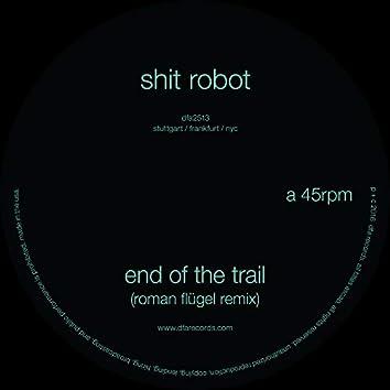 End of the Trail (Roman Flügel Remix)