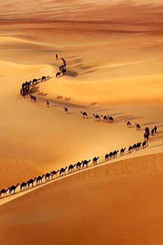 aoyudf Puzzles Rompecabezas Adultos Niños Wooden 1000 Piezas Cada Pieza Es Unica Tecnología Jigsaw Rompecabezas Juego Decoraciones hogar Camello en el desierto-50x75cm