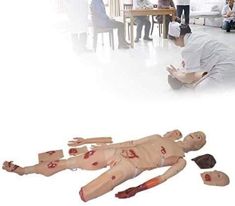 QIANSHI Menschliches Skelett-Modell Demonstrationsmodell Simulierte Wunde, Erste-Hilfe-Trauma Anatomisches menschliches Manikin Life Size Teaching Modell Patient Anatomie-Wissenschafts-Modell