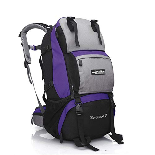 Waterproof Cycling Backpack Ripstop Water Resistant Nylon Great Hiking and Camping Daypack Backpack for Running Cycling Camping Skiing Outdoor Activities 42L ( Color : Purple , Size : 50*30*25cm )