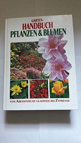 Garten-Handbuch Pflanzen & Blumen : von...
