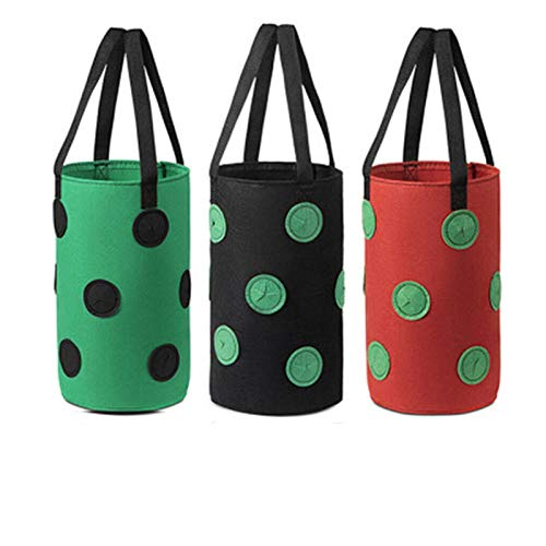 Strawberry Grow Bags 3 Pack Pack Strawberry Planter Borse 2...