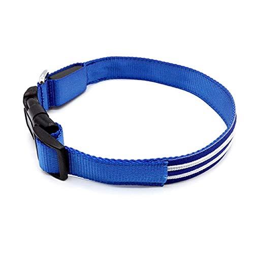 Collar LED Perro-Collar para Perro Luminoso Recargable E Impermeable-Collar Perro TAMAÑO Ajustable-Collar Perro Recargable USB-Ajustable para Perros PEQUEÑOS, MEDIANOS Y Grandes