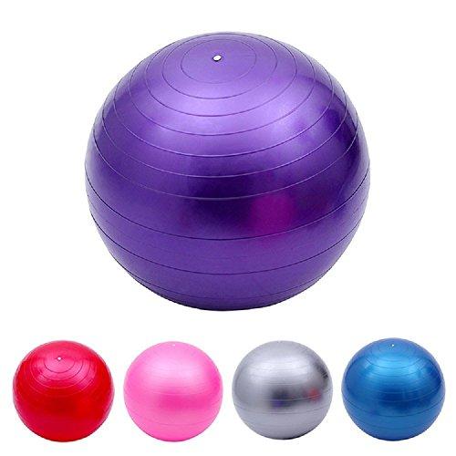 バランスボール ポンプ付き 65cm ヨガボール ダイエット エクササイズ 空気入れ (ブルー)