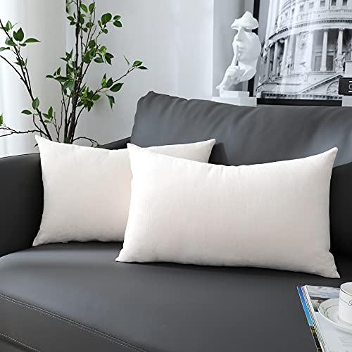 Chirest Juego de 2 Fundas de cojín poliéster Funda de cojín Cojines de sofá Cojines Decorativos para sofá Funda de cojín Suave para Sala de Estar Dormitorio 30x50cm Fundas de cojín Decorativas