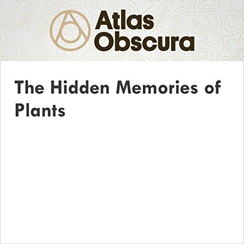 The Hidden Memories of Plants cover art