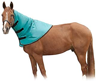 Best horse blanket with attached neck cover Reviews