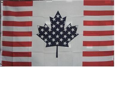 us canada flag - 8