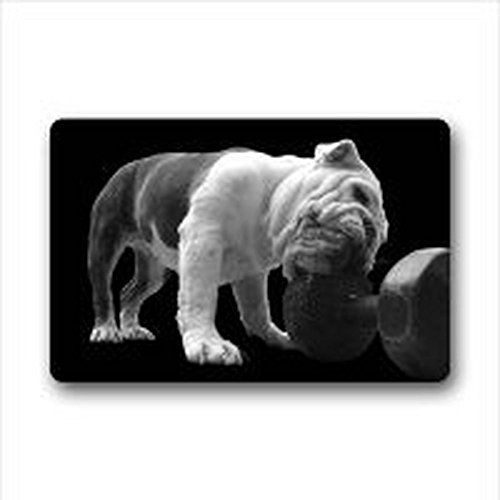 Homer Motif Lovely Bulldog Anglais Polyester Porte/extérieur Lavable Paillasson Paillasson 59,9 x 39,9 cm Intérieur/extérieur de Bain Décor de Cuisine Zone Tapis 59,9 x 39,9 cm Intérieur/extérieur