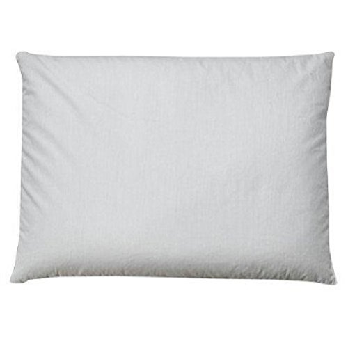 Sobakawa Buckwheat Queen Pillow, Updated