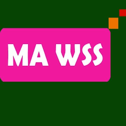 MA wss chat